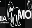 latteria-Molloy2